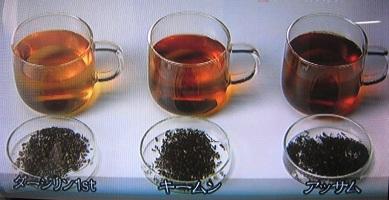 紅茶の色の違い