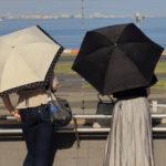 日傘の色違い